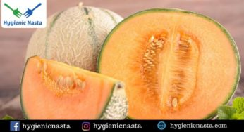 Vitamins And Minerals Of Cantaloupe Archives Hygienic Food Apart from being a delicious sweet treat in the. hygienic nasta